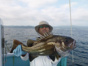 イシナギ 3.7kg 初めて釣りました