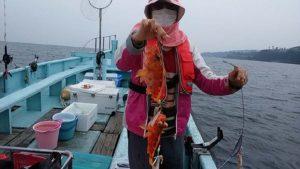 アヤメカサゴのイッカ釣り