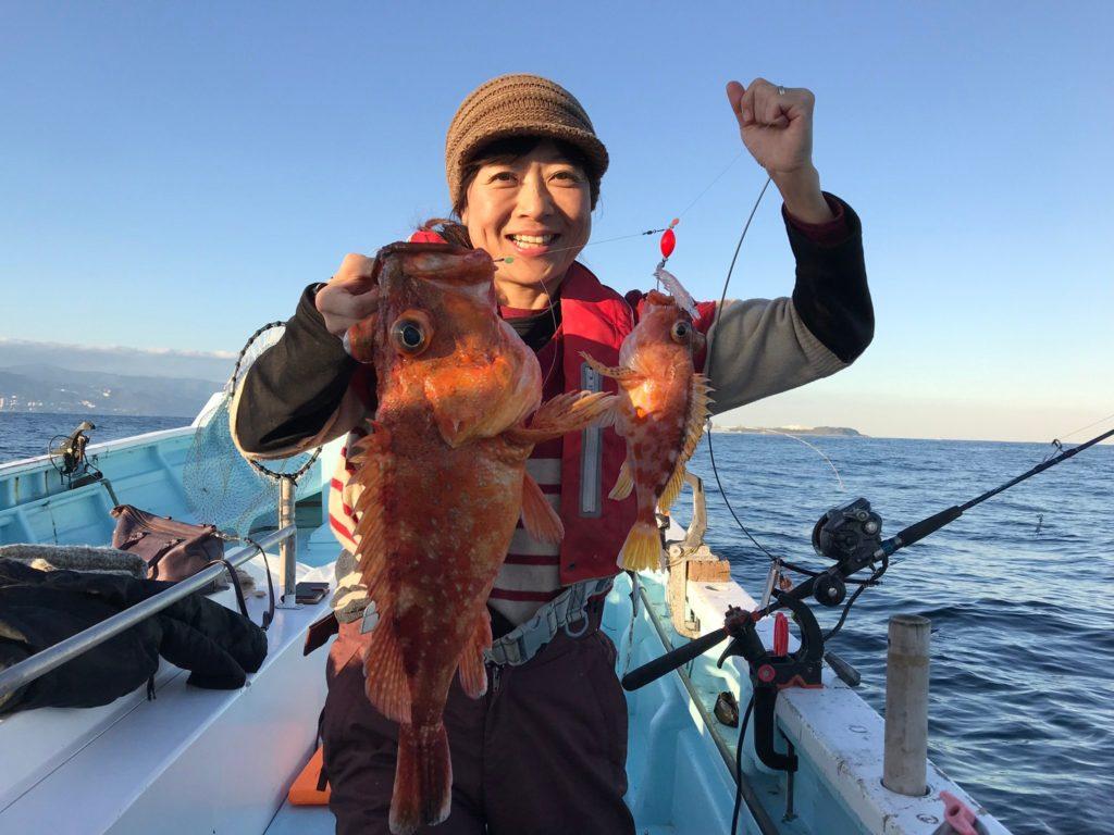 カンコ2.5kgとアヤメカサゴイッカ釣り