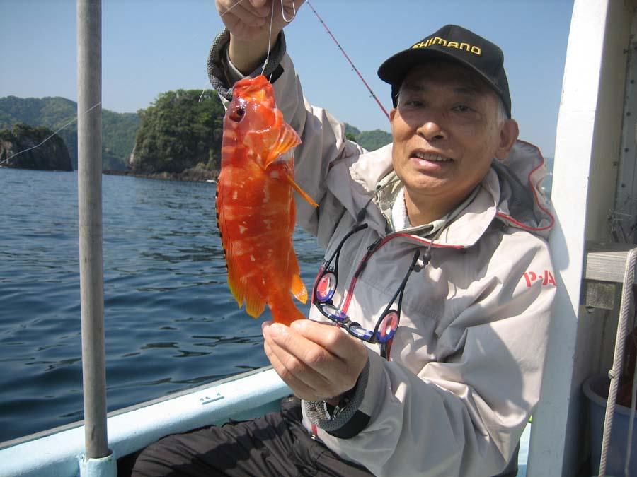 アカハタ テンヤ釣りは初めてです。